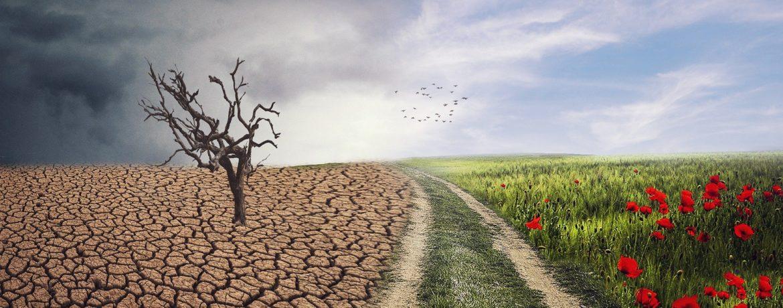 Klimaatverdrag: bloeiende akker versus verschroeide akker